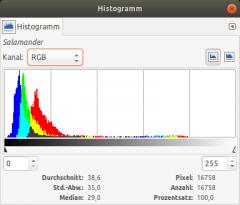 Histogramm-Salamander.png