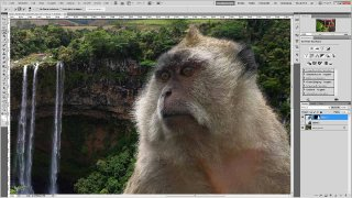 Adobe Photoshop CS5 - Kante verbessern