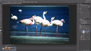 Photoshop - Export von Ebenen via Frame-Animation